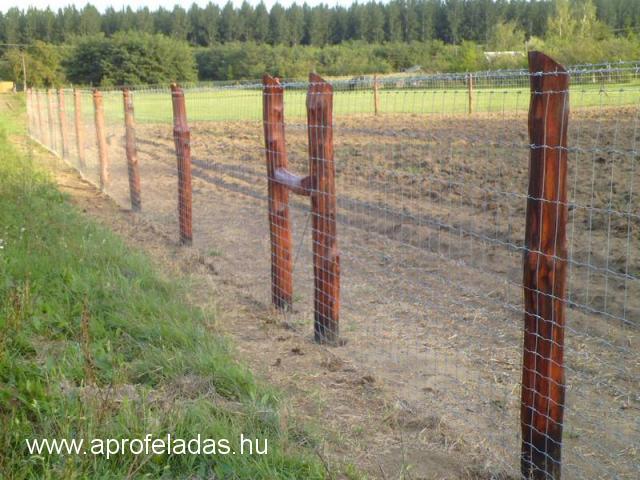 kerítés építés, vadháló, oszlop