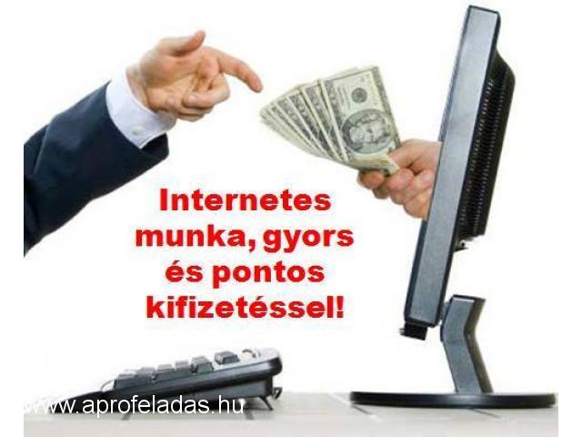 jövedelem napi fizetéssel az interneten