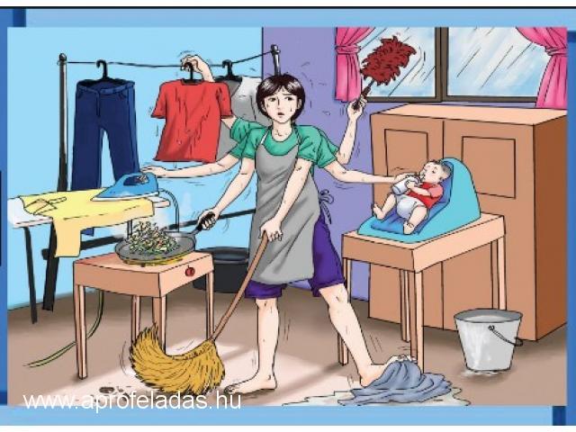 Házvezetőnőt keresek heti öt napra Soltvadkertre