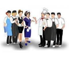 Német Munka-felszolgáló,szakács,konyhai kisegítő